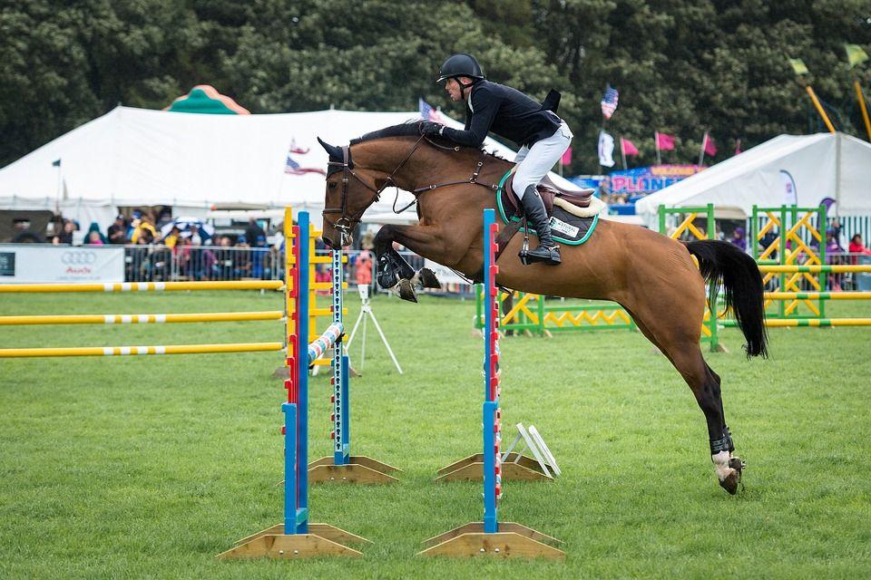 ハードルを飛び越える騎手と馬