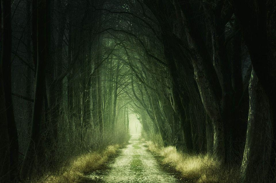 暗い一本道
