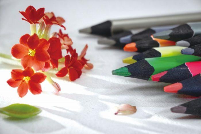 色鮮やかな鉛筆